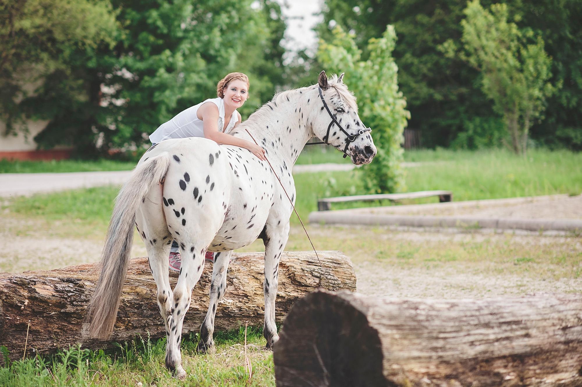 Pferdefotos_Chiemsee