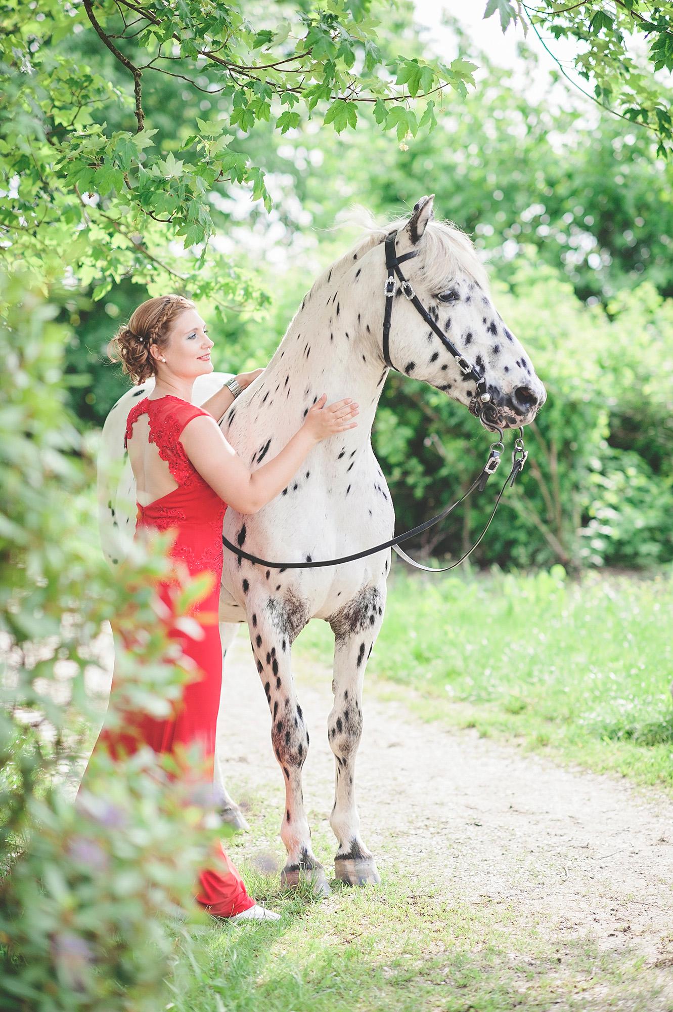 Pferdefotos_Traunstein